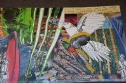 """'freedom in community' 17""""x11"""" collage on paper $35"""